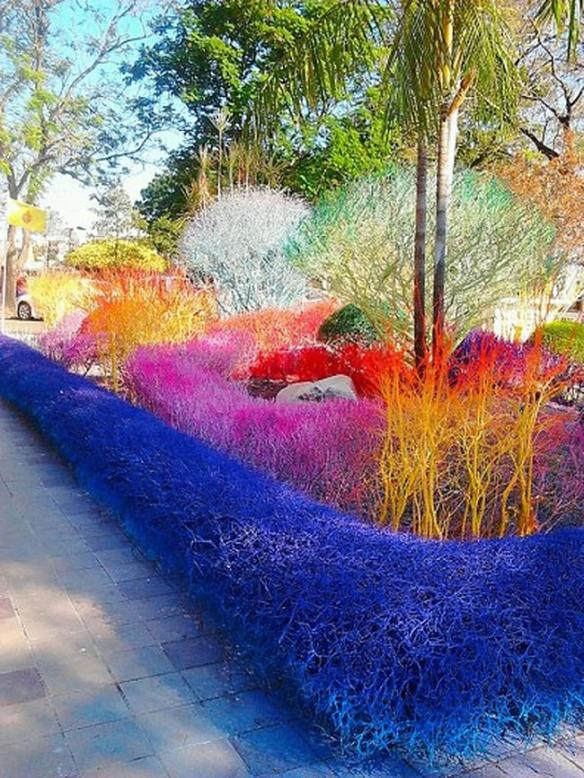 Colourful campus 3